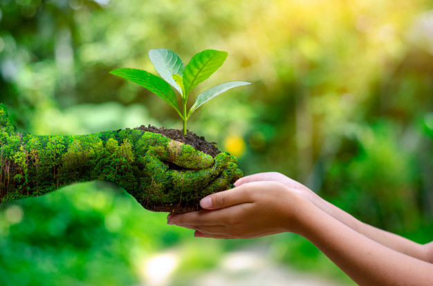 Go Green, Use Environmentally Friendly Paper